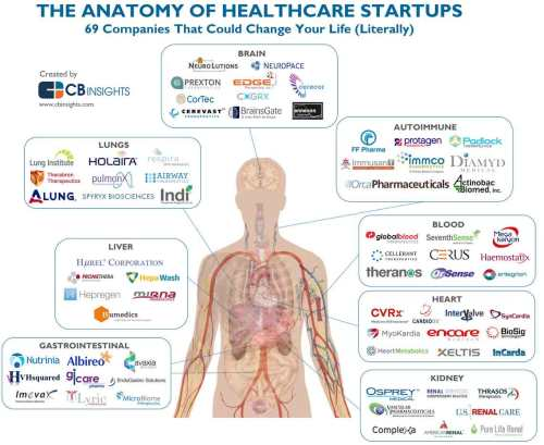 The-Anatomy-of-Healthcare-S