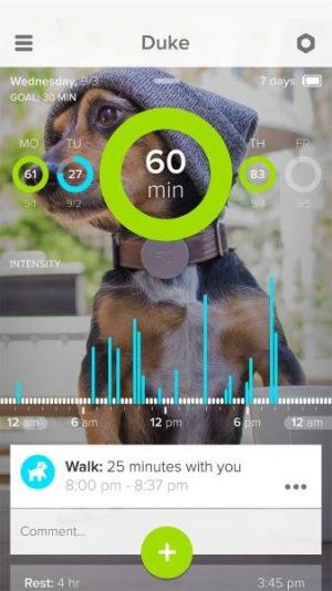 Whistle_iphone-screenshot